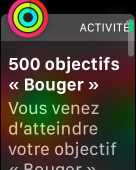 badge_500_1